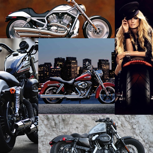 Free Harley Davidson Wallpapers Hd for PC (2)