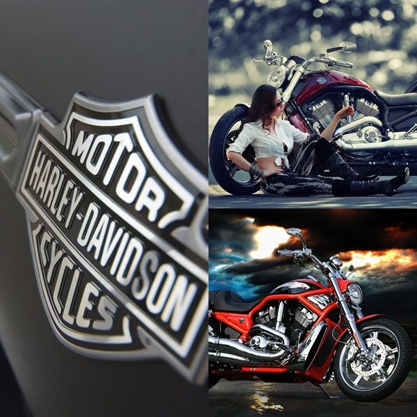 Free Harley Davidson Wallpapers Hd for PC (3)