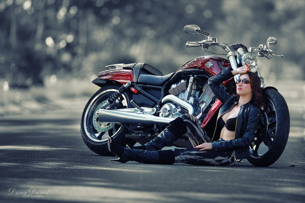 Free Harley Davidson Wallpapers Hd for PC (46)