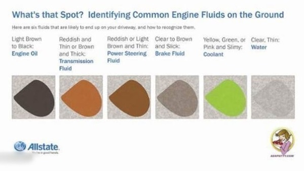Most Common Fluid Leaks from a Car (2)